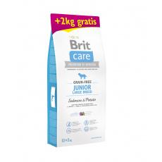Brit Care Grain-free Junior Large Breed Salmon & Potato 12+2kg ZDARMA