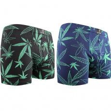 boxerky Cannabis