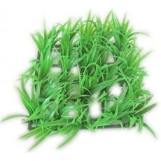 Akva rostlina rošt 13x13cm (1ks)