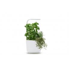 Tregren T3 Kitchen Garden smart květ. Wh