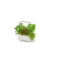 Tregren T6 Kitchen Garden smart květ.Wh